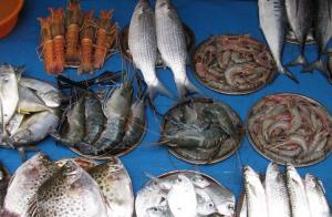 Fish-Market-Kerala-300x196